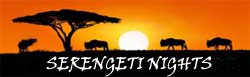 SERENGETI NIGHTS