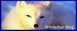 Whitefox Blog